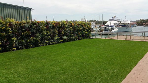 yacht club with artificial turf