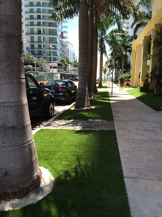 artificial grass in public street