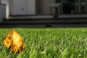 Maintenance artificial grass
