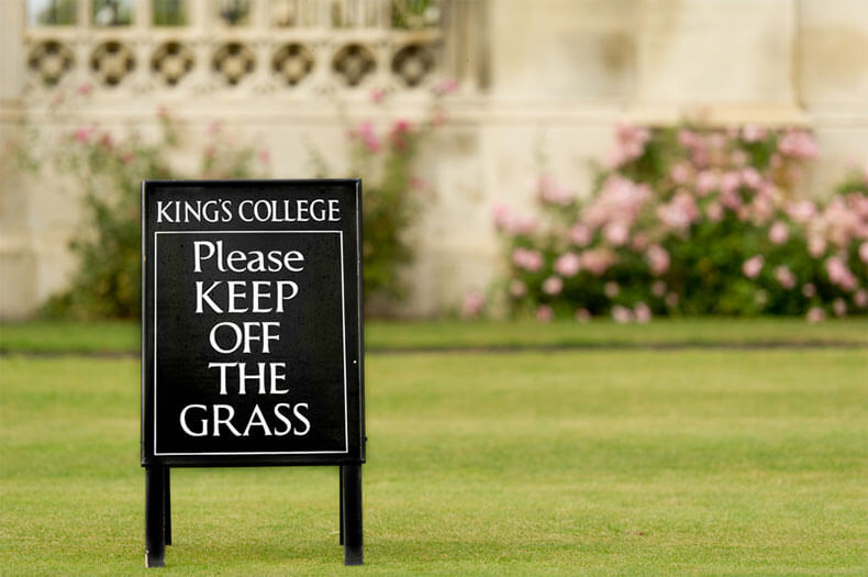 Kings College London Grass Lawn