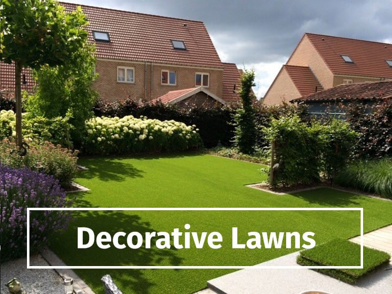 decorative lawns