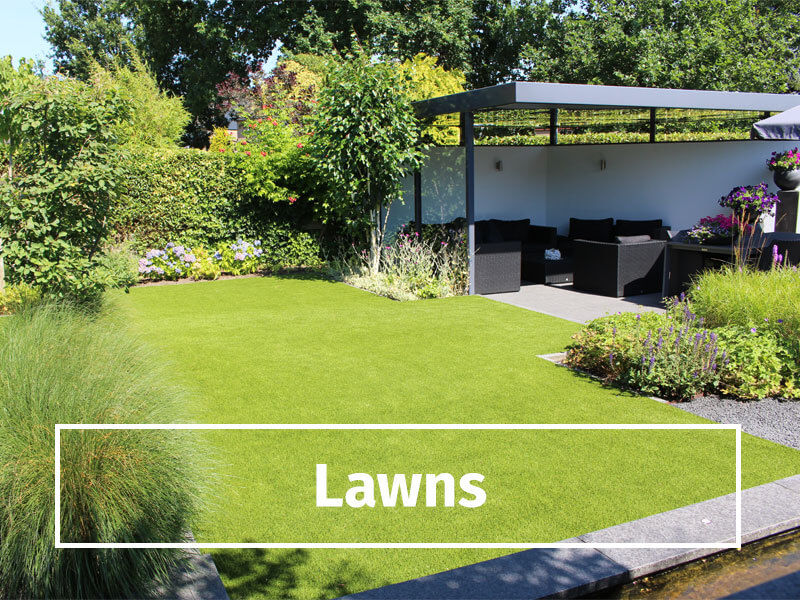 lawns-button