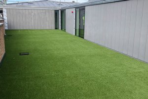 Oxford University artificial grass roof